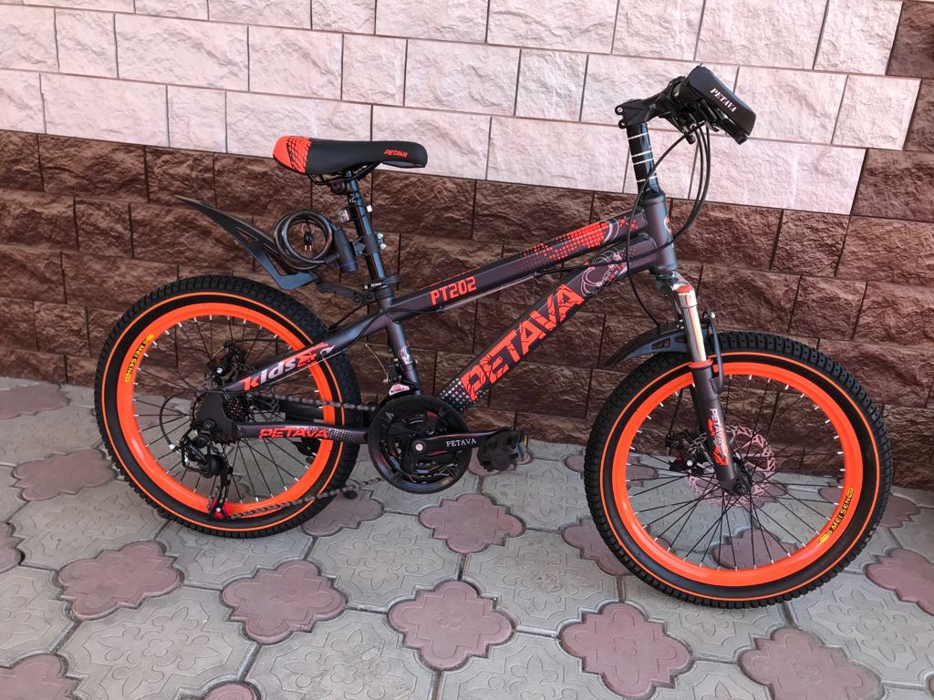 Подростковый велосипед Petava PT-202-20