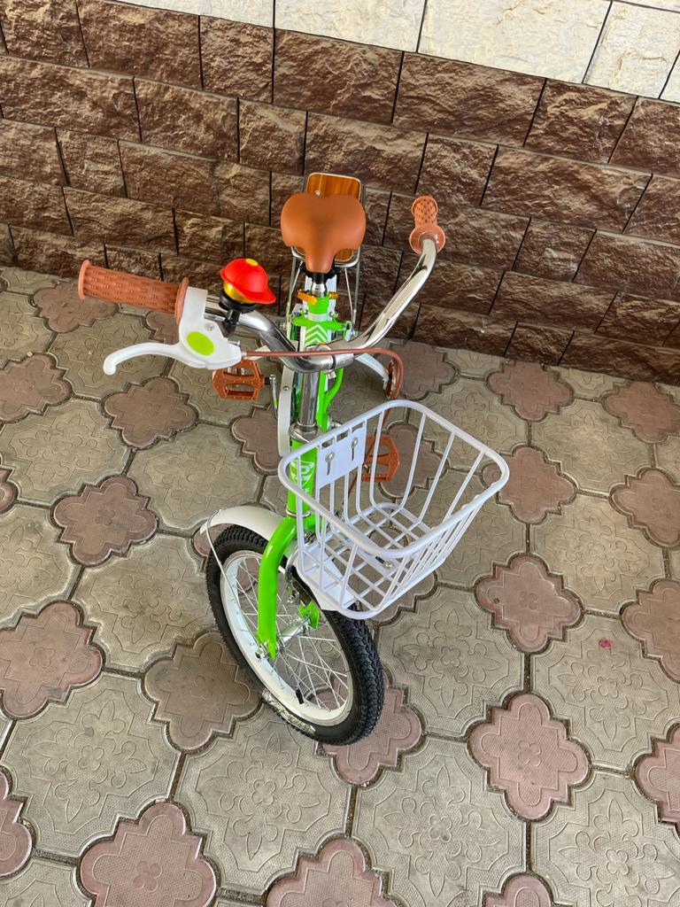 Детский велосипед Petava TC-8 16D
